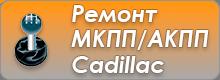 Ремонт МКПП/АКПП Cadillac